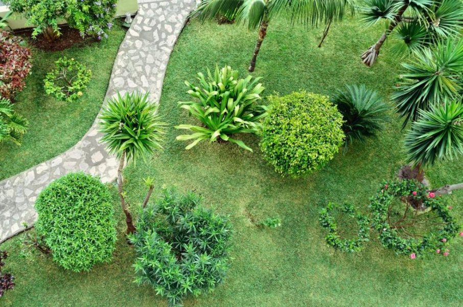 Fremont Lawn and Landscaping