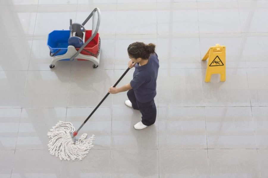 Meticulously cleaning of Roseville