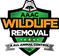 AAAC Wildlife Removal of Florence